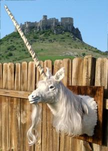 unicorn trophy mount on fence